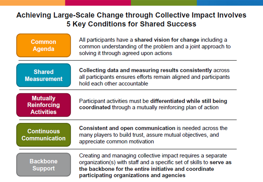 Large Scale Change through Collective Impact